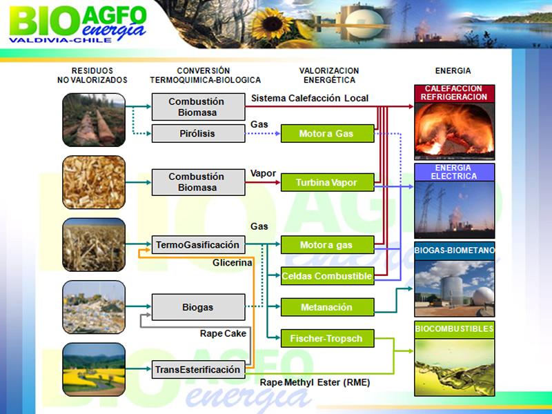 external image Biomasa.jpg