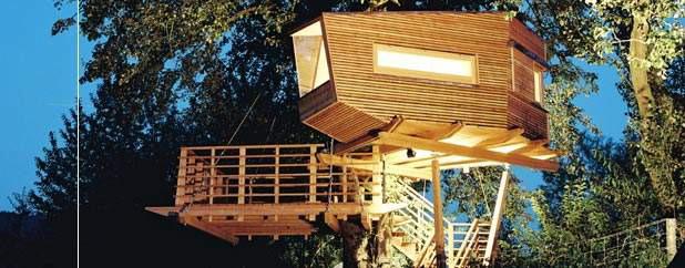 casas de madera construidas sobre rboles
